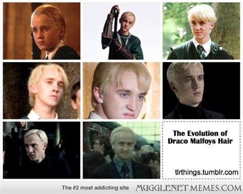 Draco Malfoy Memes - mugglenet memes the evolution of draco malfoy s hair