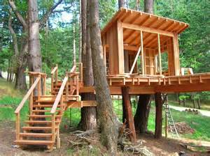 Backyard Treehouse Ideas Treehouses For For A Gift Homestylediary