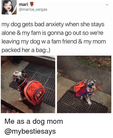 Dog Mom Meme - 25 best memes about dog mom dog mom memes