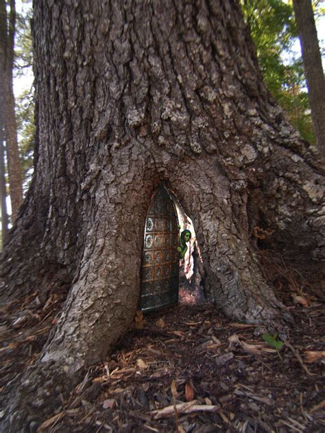 real treehouse fairy tree houses on pinterest 71 pins