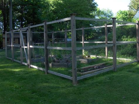 vegetable garden enclosures weld wire used for vegetable garden enclosure