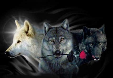 wolf s blood red moon wolf dancer