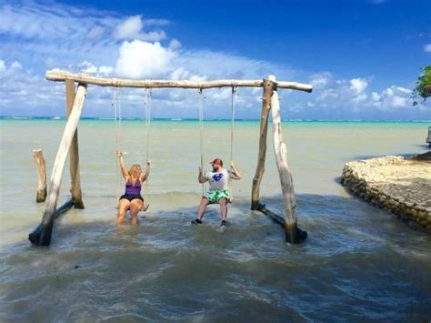 ocean swing cool ocean swing set on ranch property picture of chukka
