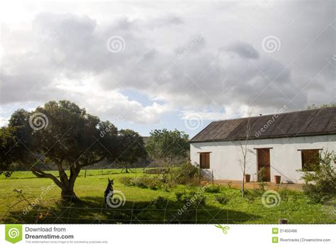 dog houses south africa rural cape farm house in the overberg south africa royalty free stock image image