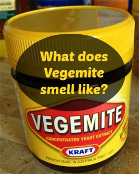 does concolor fir smell like oranges what does vegemite smell like how things smell