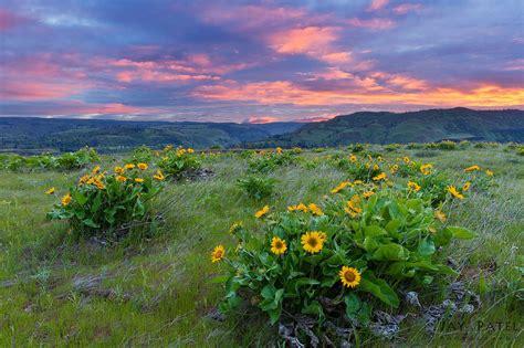 Landscape Photography Usa Am I An Effective Landscape Photographer
