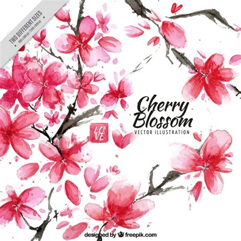 Blooming Flower by Cherry Blossom Vectors Photos And Psd Files Free Download
