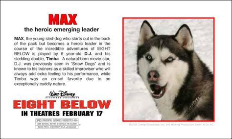 eight below names eight below names search engine at search