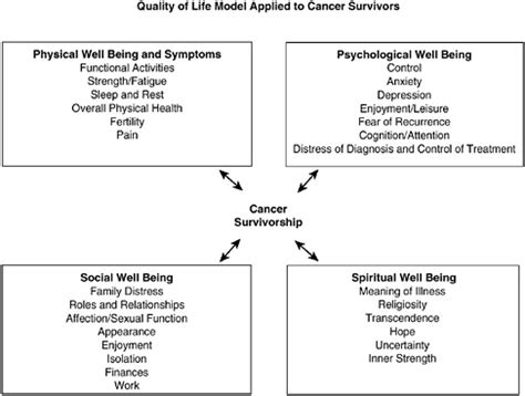 Depression In Cancer Patients A Literature Review by 3 The And Psychological Concerns Of Cancer Survivors After Treatment From Cancer