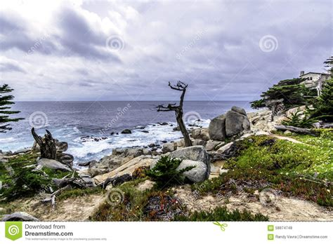big sur coast pescadero point at 17 mile drive stock