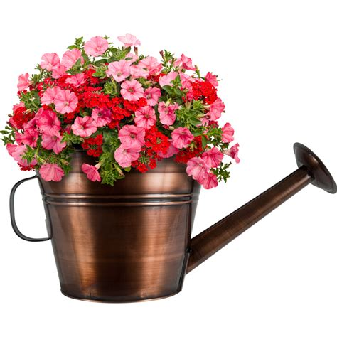 10 in watering can planter pride garden products