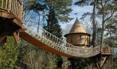 family lives   tree house     castle