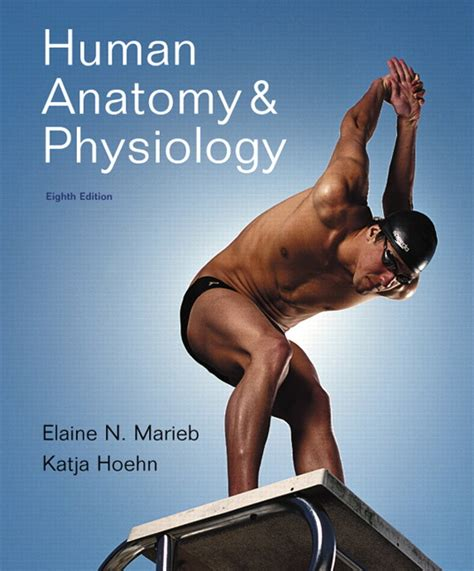 human anatomy 9th edition marieb hoehn human anatomy physiology plus mastering