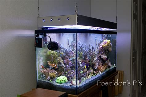diy t5 aquarium lighting t5 s for sps reef2reef saltwater and reef aquarium forum