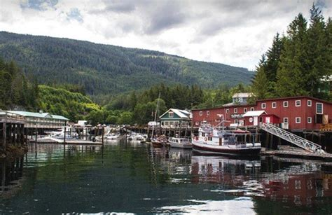 port hardy bc canada travel guide