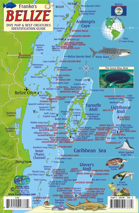 dive belize belize scuba diving map and reef creature identification