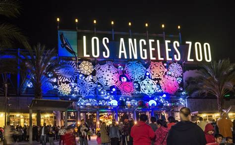 8 Fun Things To Do In L A That Are Way Better When It S Zoo Light Show