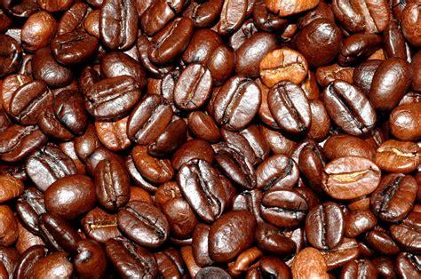 cafe la madeintogo grains de caf 233
