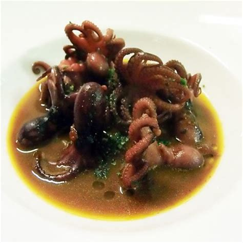 cucinare moscardini freschi moscardini in guazzetto di scorfano fresco pesce