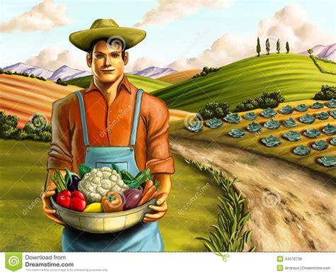 Vegetables Farming Stock Illustration   Image: 44576738