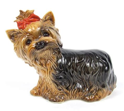 yorkies for sale in md terrier puppy for sale in baltimore breeds picture