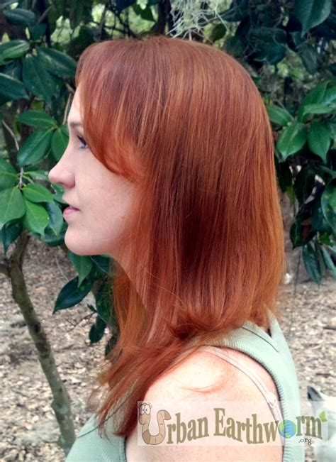 all natural henna hair dye original all natural henna hair dye pictures the haircut