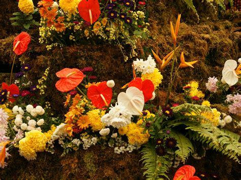 wallpaper flower mix flower wallpapers