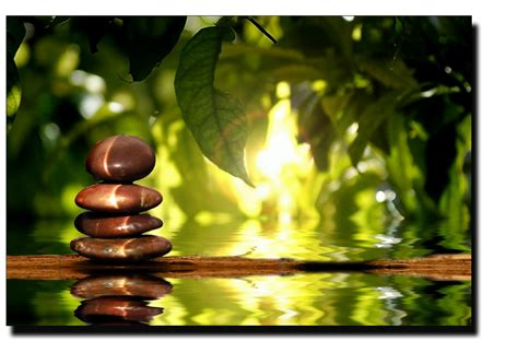 zen picture david knapp fisher need to relax it only takes one