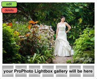 japanese tea gardens bridals » heidi rae photography