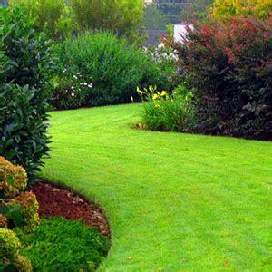 new leaf landscaping