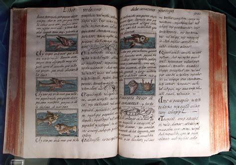 libro historia general de las c 243 dice florentino una cultura en im 225 genes