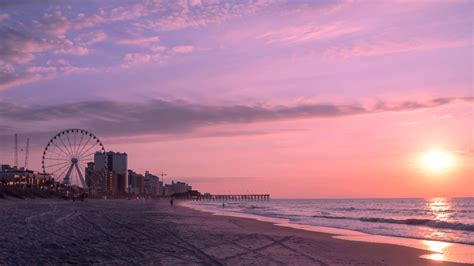 into the sound country a carolinian s coastal plain books south carolina pictures and facts