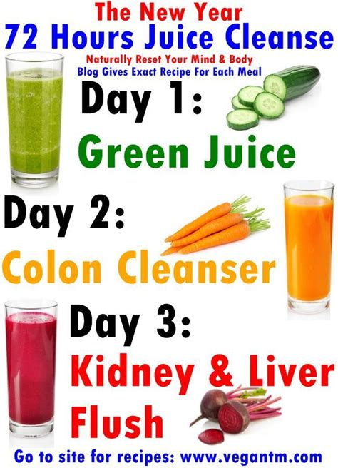 Detox Juice 3 Days Ingredient by 100 Colon Cleanse Recipes On Colon Cleanse