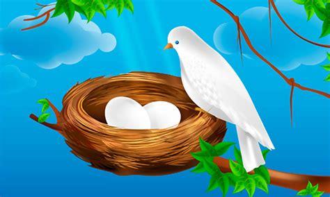 tutorial illustrator bird premium tutorial vector bird nest illustrator