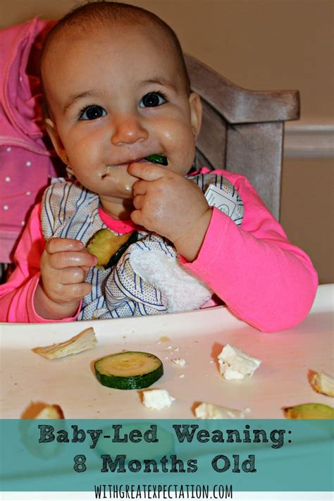 Real Food For Babies And Toddlers Baby Led Weaning And Beyond Ebook 90 best baby tips images on for babies