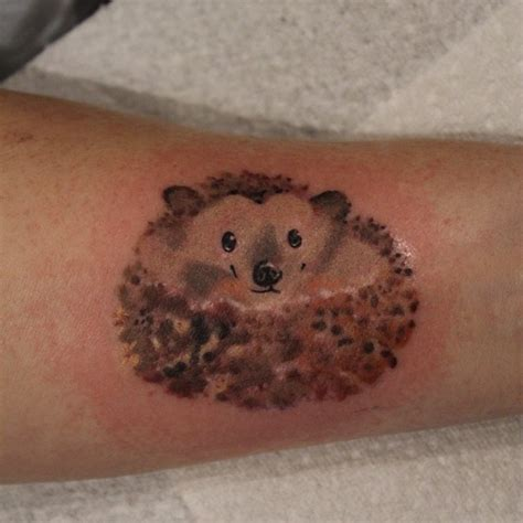 hedgehog tattoo great hedgehog pictures tattooimages biz