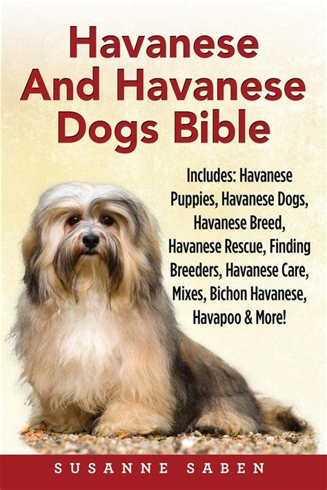 havanese rescue illinois havanese and havanese dogs bible susanne saben dym worldwide publishers ebook