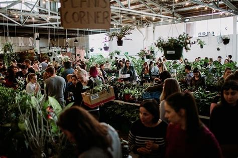 huge indoor plant warehouse sale  birthday bash perth