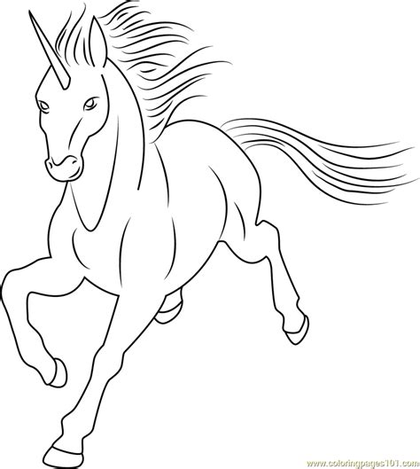 unicorn  dolphy coloring page  unicorn coloring