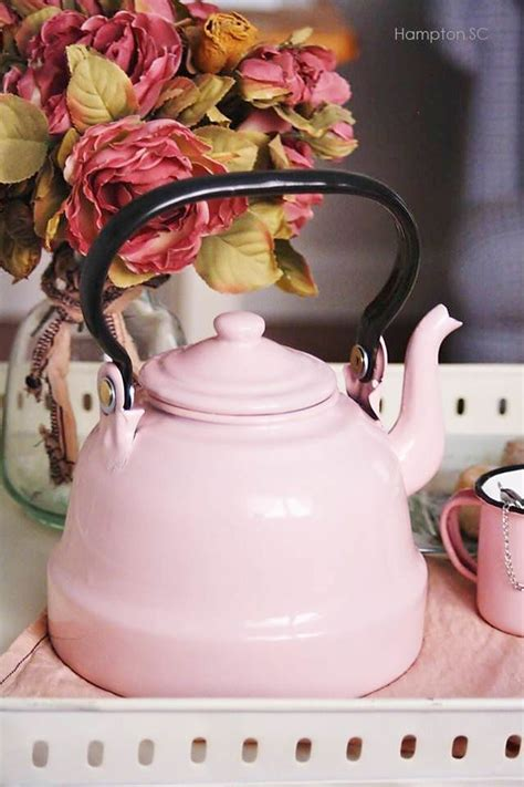 Baby Pinkis 2 Pot this is the reason you should never reboil water in your kettle