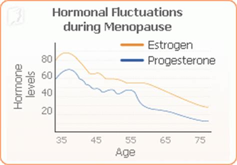 Menopausal Women And Mood Swings
