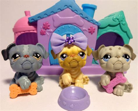 littlest pet shop dog house 592 best kennedy images on pinterest funny animal funny animal pics and funny cats