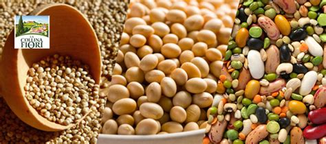 alimenti contengono proteine vegetali i 3 alimenti vegetali ricchi di proteine la collina dei