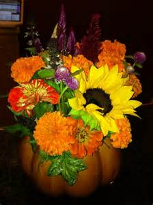 flower fall sharing nature s garden fall flowers for wordless wednesday