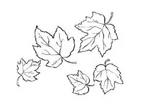 autumn leaf coloring page free coloring pages of autumn leaves
