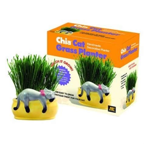 Chia Cat Grass Planter Kit Quot Snoozing Kitty Quot As Seen On Chia Cat Grass Planter