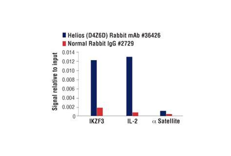 alexa hton helios l helios d4z6d rabbit mab 36426