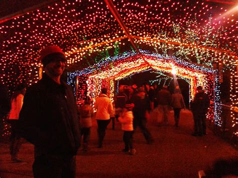 winter things to do in chicago zoo lights at lincoln park