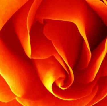 orange color meaning symbolism orange color names
