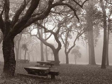 imagenes tristes en 3d paisaje d tristeza y melancolia me usta est paisaje cn